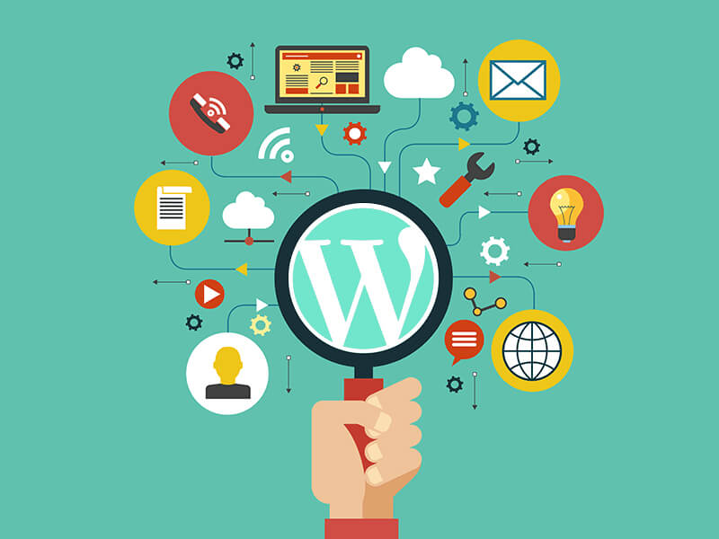 WordPress Hosting ve SEO Hosting