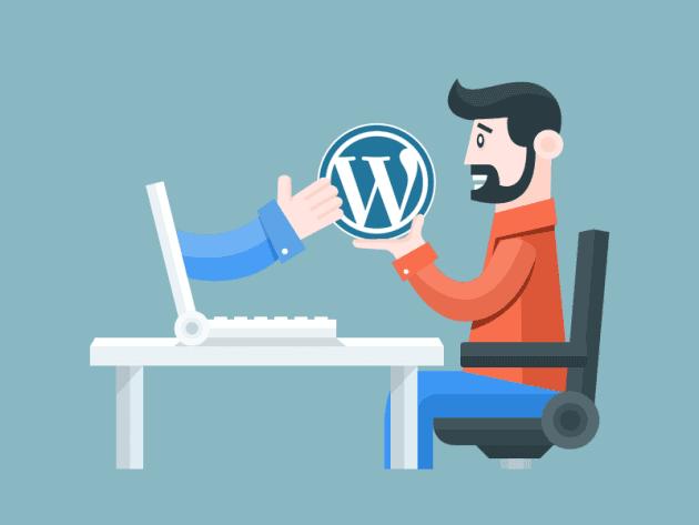 WordPress Danışmanlık
