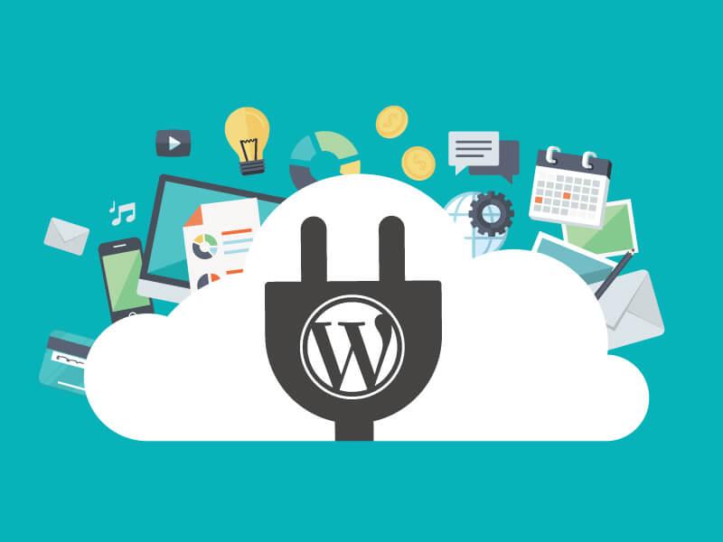 WordPress ile e-ticaret sitesi yapılabilir mi?