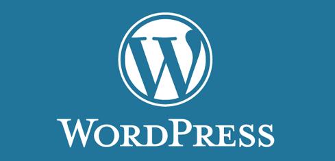 WordPress Kodları